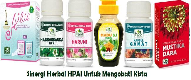 sinergi herbal HNI HPAI sebagai obat penyakit kista