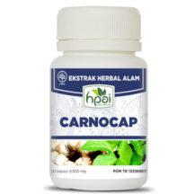 carnocap Kapsul HNI HPAI, obat herbal untuk tumor dan kanker