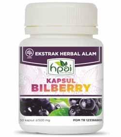 Bilberry Kapsul, Obat Herbal HNI HPAI Yang Kaya Manfaat